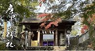 唐澤山神社_リンクバナー_アートボード 1 のコピー.png