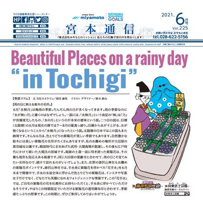 雨の日に映える栃木の名所。