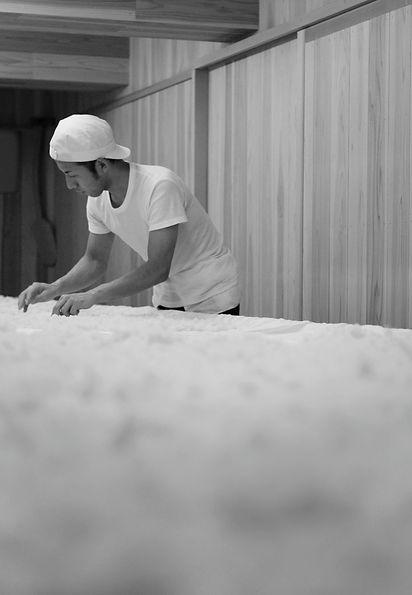 Kojimuro, koji, kojimai, fabrication du saké, Kintsuru, Ile de Sado, Monsieur Saké, importation privée, Kato Shuzo, Sado island, Niigata