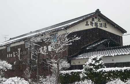 Obata Shuzo, Manotsuru, saké, importation privée, Monsieur Saké,  japanese sake, Ile de Sado, Sado island, Kura, Niigata, hiver, winte, Japon, Japan.
