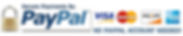 Paypal-Logo-No-Paypal-Account-needed.png