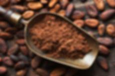 Visit Chocolate Museum