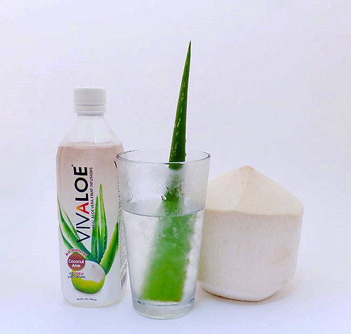Vivaloe Coconut Aloe Beverage, 500ml (16.9oz) PET Plastic Bottle