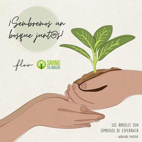 Sembrar esperanza con Saving the Amazon