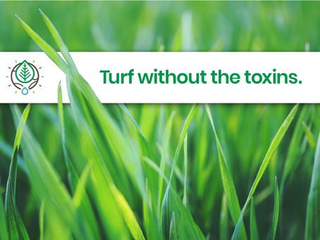 5 Tips for a Greener, Safer Summer Lawn