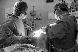 Dr Theo Birch & Dr Brendan Louie