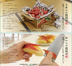 ja_fuji_01-02.jpg