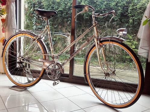 Vélo ville Starnord