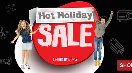 Hot Holiday Sale- 769x300.png