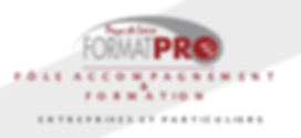 logo FORMAT-PRO3 (003).png
