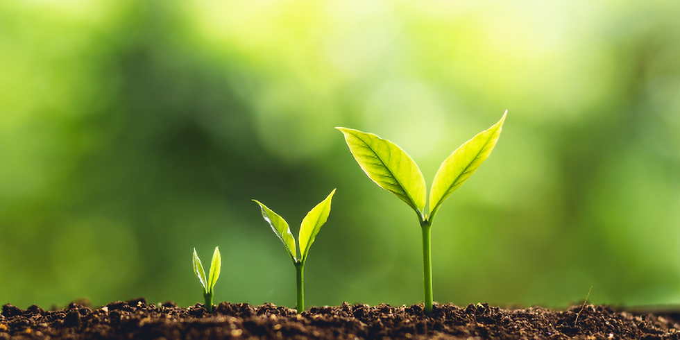 Self-care Sunday Series: Growth Mindset
