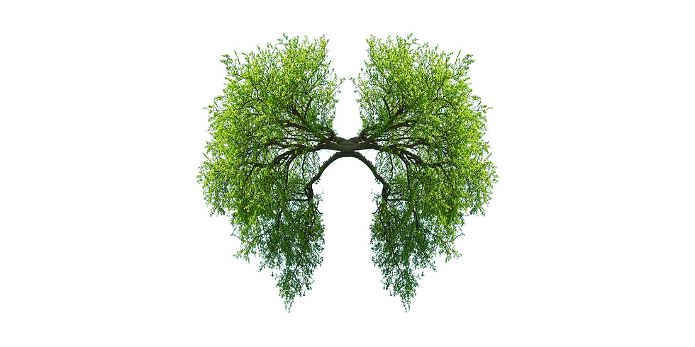 Breathwork for Recovery w/ Pierre-Etienne Vannier