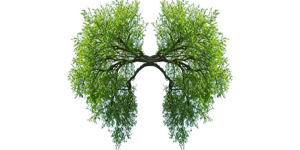 Breathwork for BIPOC w/ Abdul-Rehman & Mandel