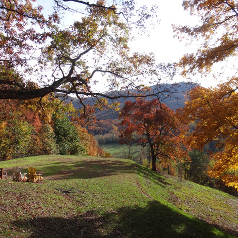 """""""Honey Hill"""" On A Fall Day"""