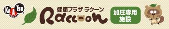 kaatsu-raccoon.png