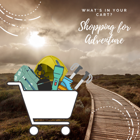 What's In Your Cart? Shopping For Adventure