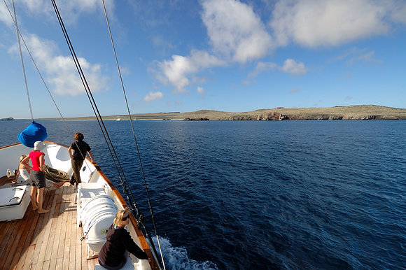 5 Days Galapagos Naturalist Cruise