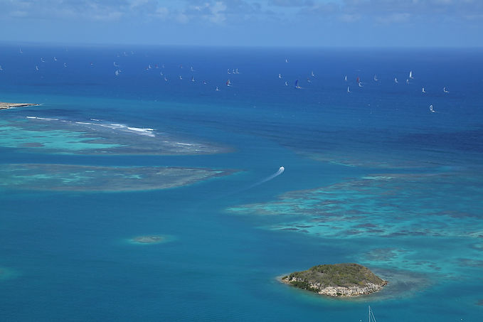 Rorc Caribbean 600 yacht race berths available featuring yachts from around the world race berths available with The Salamander Sailing Adventure