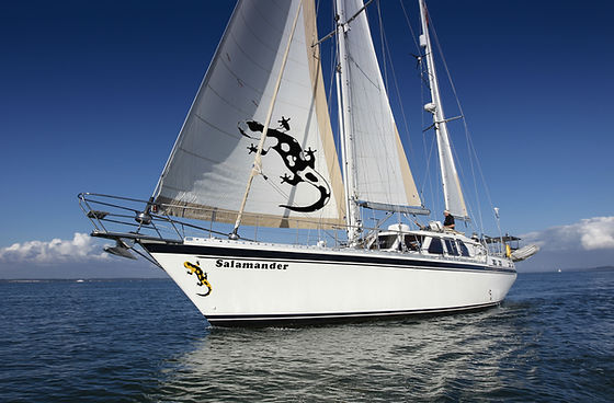 Salamander Caribbean Sailing Holidays with The Salamander Sailing Adventure destinations include Grenada St Vincent and the Grenadines Bequia Mustique Canouan Union Palm Island Guadeloupe Martinique Antigua Saint Kitts and Nevis BVI's #GetInTouch2GetOnBoard +44 (0) 7798 524111 info@thesalamandersailingadventure.com