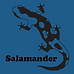 The Salamander Sailing Adventure
