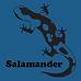 The Salamander Sailing Adventure UK, Baltic and Caribbean Yacht Charter