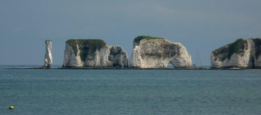 The Salamander Sailing Adventure - Old Harry Rocks, Studland Bay, Dorset - Yacht Charter - Day Sail
