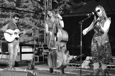 M65508 Jaywalkers Beardy Folk Festival 1