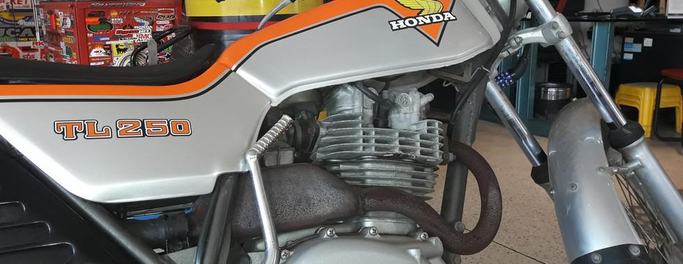 Honda Niv הונדה ניב