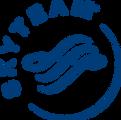 1028px-Skyteam_Logo_001.svg.png