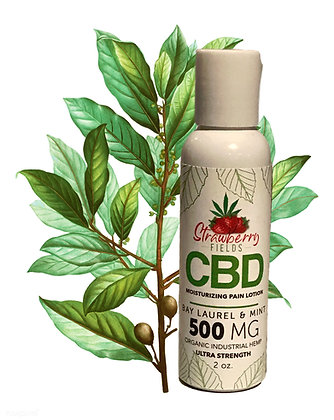 Fast Acting 500MG CBD Pain Lotion 2oz Bay Laurel Strawberry Fields