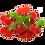 Thumbnail: 300MG Cherry Bombs (20 Pieces)