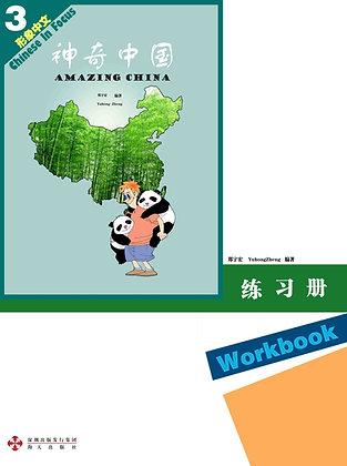 AMAZING CHINA Workbook