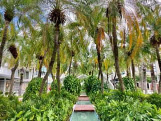 Miami-Photographer-Fairchild Tropical-Bo