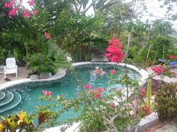 Pool from dining Veranda