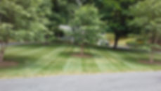 Yard clearing, make-overs and mulch, from Northwest Lawn Care