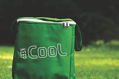 cooler-bag-4812757__340.webp