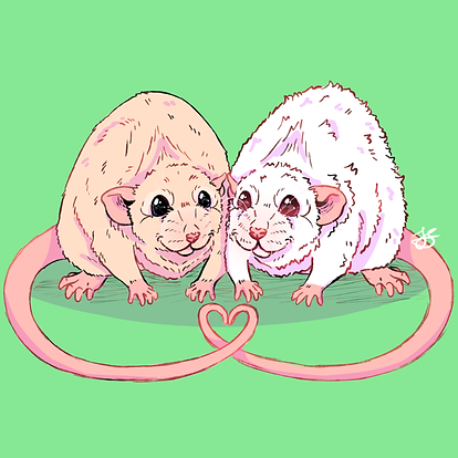 2 rats for sarah green background.png