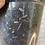 Thumbnail: Anthurium Verde Hybrid (Papillilaminum parentage) #1