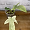 Thumbnail: Philodendron Florida Ghost #3