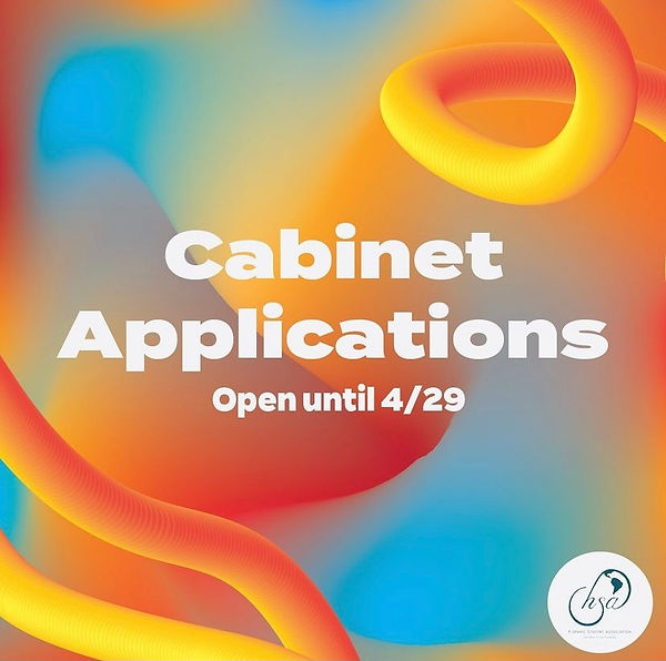 Cabinet Application.jpg