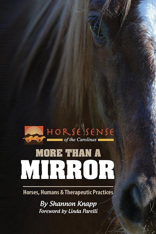 More Than A Mirror