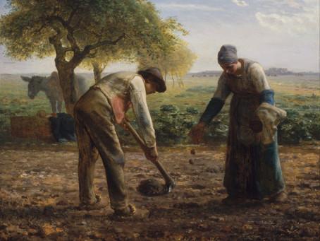 農作業について考えてみた