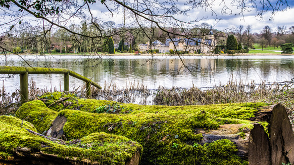 Newstead. A view across upper lake.