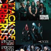 HNIB / GYZE / DEVILOOF / Tour