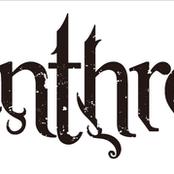 Misanthropist / logo