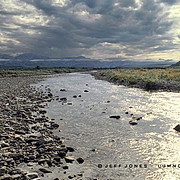 A Coastal Plain River