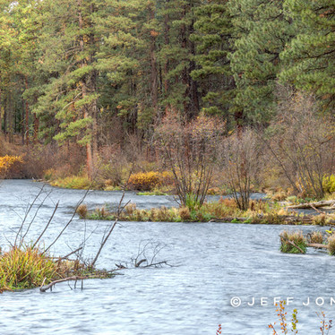 Fall Morning Along Metolius River