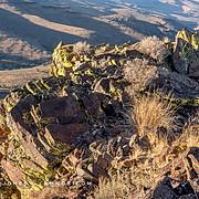 Lichen Laced Ridge