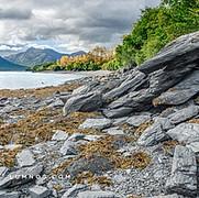 Southern Fjord, no. 7