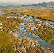 Braided River, Coastal Plain